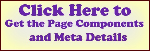Website Checker Different Meta Details