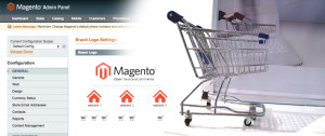 Magento Configuration Settings Required for the Website