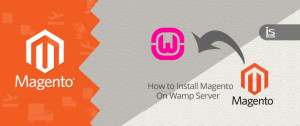 How to Install Magento on Wamp Server