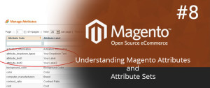 Understanding Magento Attributes and Attribute Sets